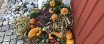 Høstgudstjenester med brunch