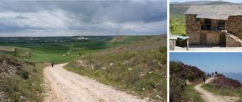 Rejse: Pilgrimsruten Nordspanien